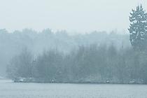 Schneefall am Haubachsee