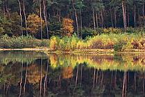 Haubachsee im Herbst